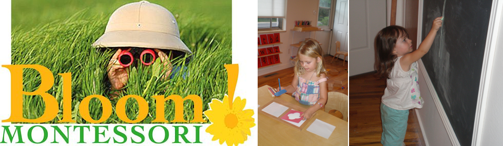 Bloom Montessori Preschool serving Longmont, Frederick, Erie, Niwot, Gunbarrel, and Boulder.
